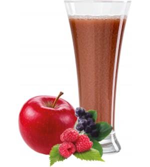 OVOCŇÁK mošt jablko - lesní ovoce 250 ml